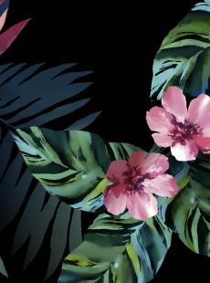 Accessoire Miraclesuit : Pareo Tahitian Temptress